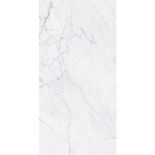 EVO CARRARA MATT 600X600